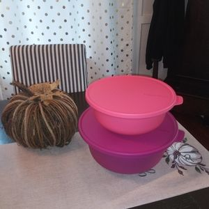 New Tupperware set of 2 serving Bowls